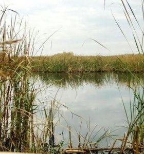 Дачный участок на берегу Волги, 100 м