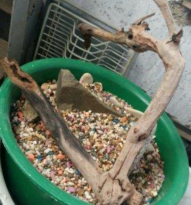Грунт и коряга для аквариума