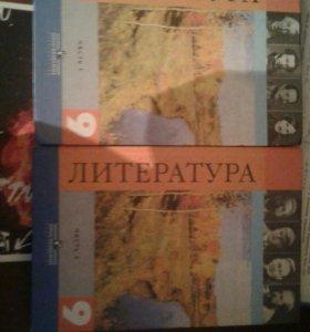 Литература за 9 класс В.Я.Коровина, 2 части