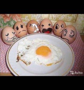 Яйца домашние куриные деревенские