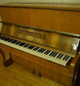 Пианино LEGNICA