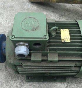 Электродвигатель, двигатель Новый (Турция)