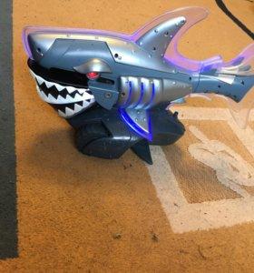 Акула машина