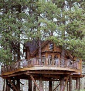 Дома беседки на деревьях