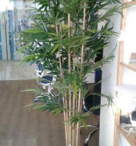 Искусственные растения и деревья, фикус, бамбук