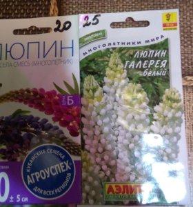 Продам семена по оптовой цене !
