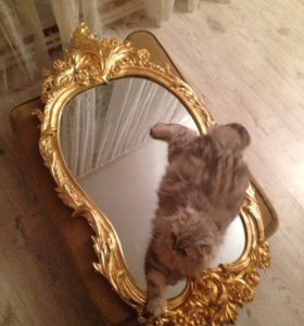 Зеркало в старинной раме.