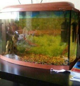 аквариум с подстветкой 70 л