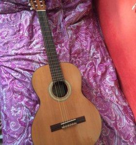 Гитара Kremona