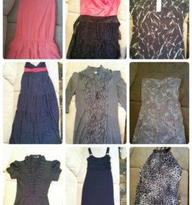 Платья, туники и юбки