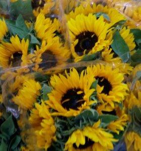Цветы подсолнухи, букеты, доставка в СПб