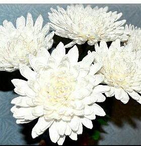 Хризантемы из гофрированной бумаги