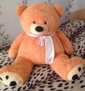 Большой и красивый медведь