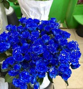 Синяя кустовая роза