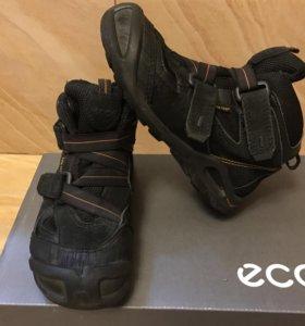 Ботинки Ecco демисезонные весна/осень