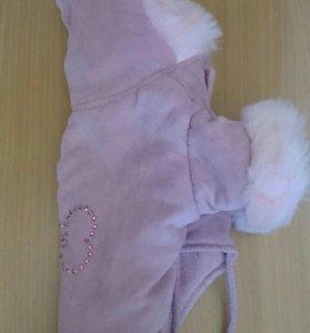 Пальто для маленькой собачки