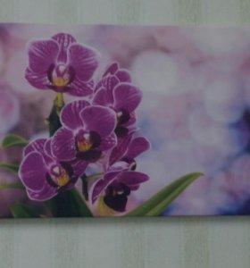 Картина на холсте 40х60