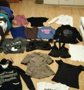 Толстовки,футболки,рубашки, жилет