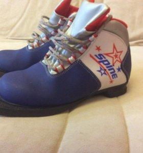 Лыжные ботинки Spine,34 размер,б/у 3 раза.