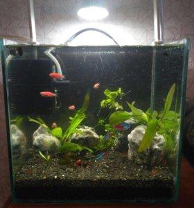"""Нано аквариум 8 литров """"все включено""""."""
