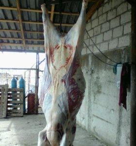 Продажа и забой скота