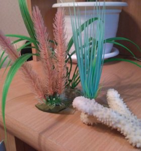 Искусственные растения и гибкий распылит  аквариум