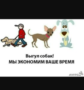 Выгул собак экономия время +79049785184