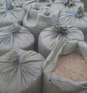 Зерно.пшеница 3класс