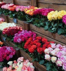 Цветы мелким оптом и в розницу