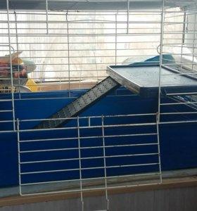 Продам клетку для хомяка или морской свинки