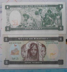 Банкнота 1 накфа 1997 года - Эритрея