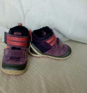 Ботинки Ecco 2 пары
