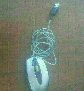 Компьютарная мышь