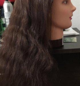 Голова для обучения парикмахеров