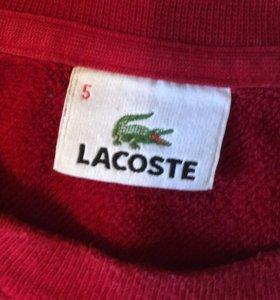 Толстовка Lacoste