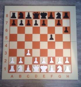 Демонстрационные шахматные доски новые