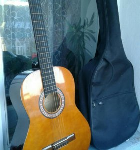 Гитара Vision с чехлом