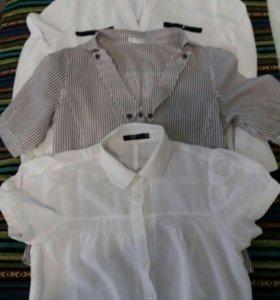 Блузки 44 размера