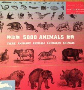 5000 животных, + 4 CD