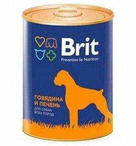 Консервы Brit для собак