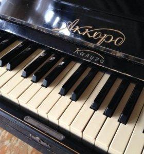 Фортепьяно Аккорд