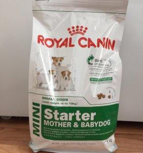 Новый корм Royal canin mini starter
