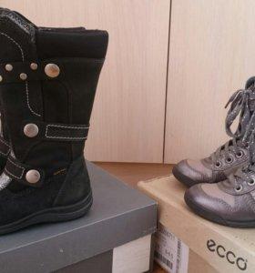 Обувь Ecco размер 24
