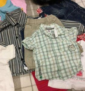 Рубашки и майки