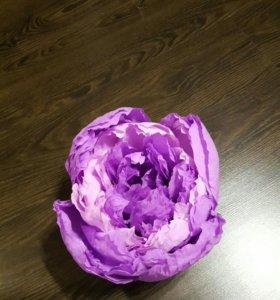Цветы из гофрированной бумаги. Бумажные цветы