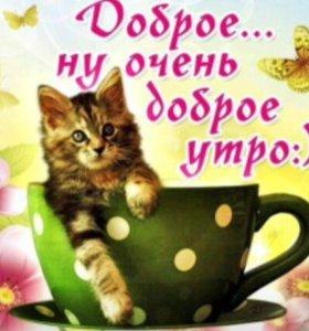 Сниму 2 х комн. квартиру