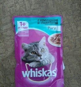 Корм для кошек дешево