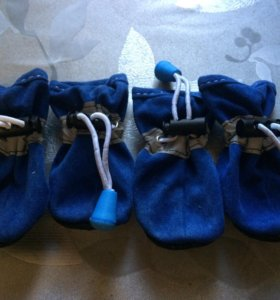 Обувь для питомца