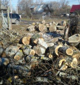 Даром дрова