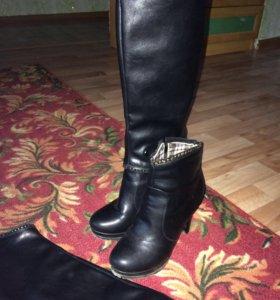 Сапоги (10см) каблук